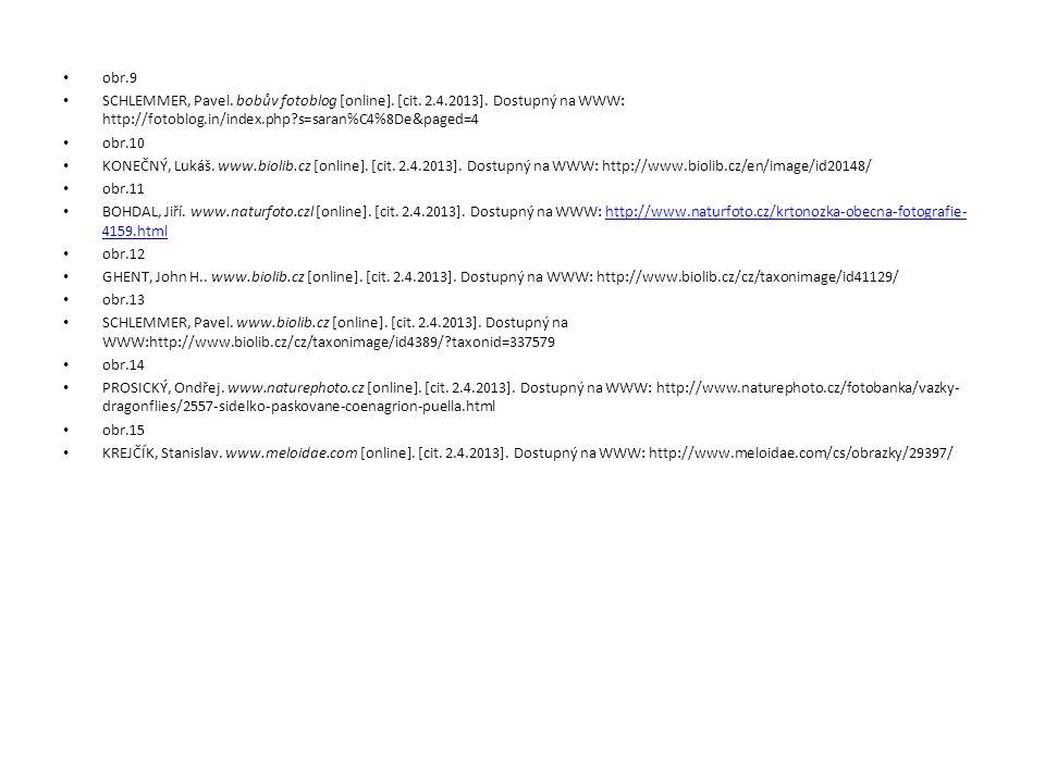 obr.9 SCHLEMMER, Pavel. bobův fotoblog [online]. [cit. 2.4.2013]. Dostupný na WWW: http://fotoblog.in/index.php s=saran%C4%8De&paged=4.